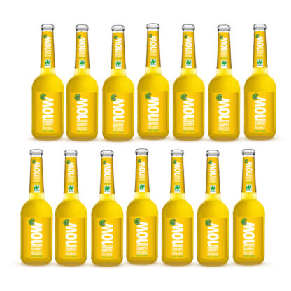 Now Sunny Orange Bio Limonade by Lammsbräu, 14 Flaschen