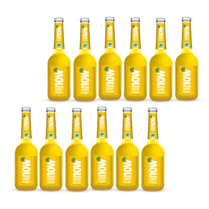 Now Sunny Orange Bio Limonade by Lammsbräu 12 Flaschen